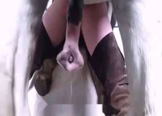 Animal Porn XXX Sex Videos